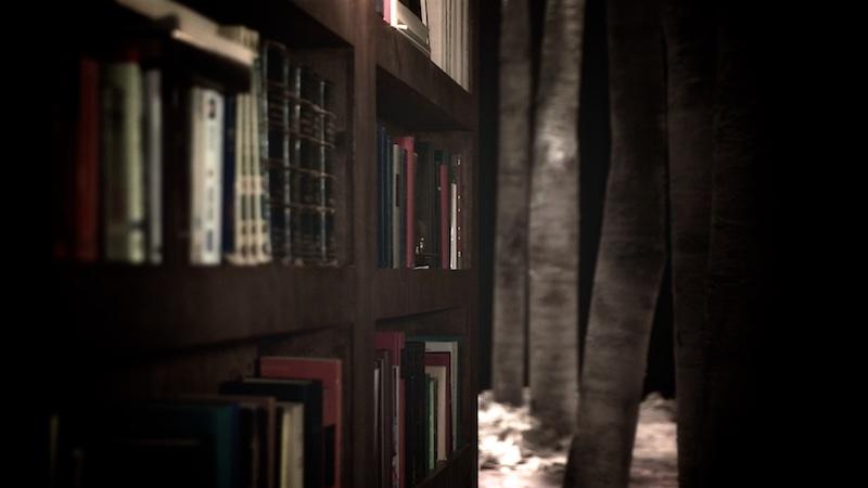 La bibliothèque, la nuit 3